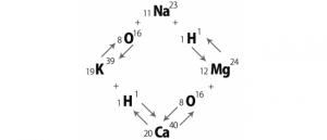 ケルブランの原子転換について