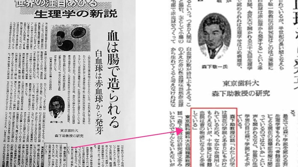 「腸管造血論」の立証